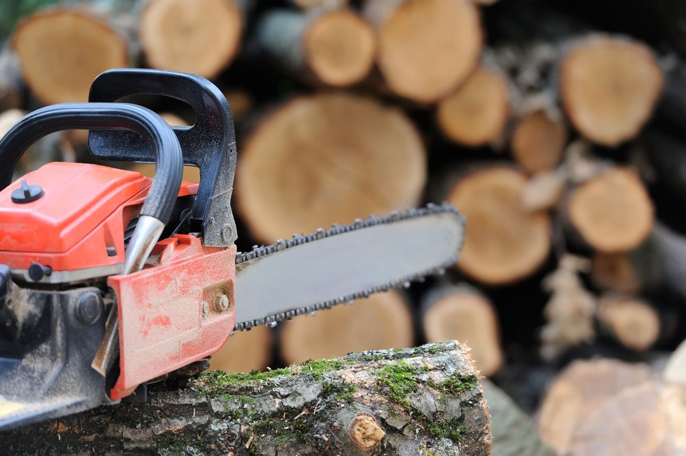 orange chainsaw sitting on a tree trunk in front of a pile of chopped wood
